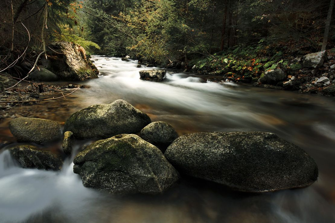Calm and tranquil streams